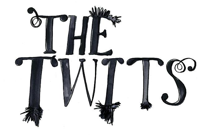 The Twits Cottonwood Studio