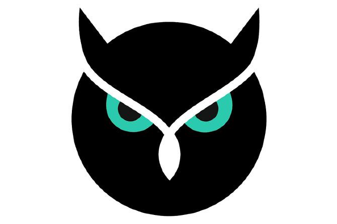 Night owl logo - photo#1